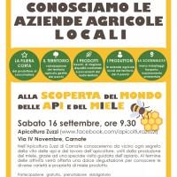 Sabato 16 settembre: alla scoperta dell'apiario