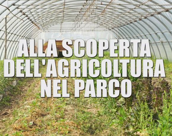 """Domenica 5 Maggio: presentazione del video """"Alla scoperta dell'agricoltura nel Parco"""""""