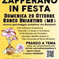 Domenica 20 ottobre – ZAFFERANO IN FESTA – ANNULLATA!!!!